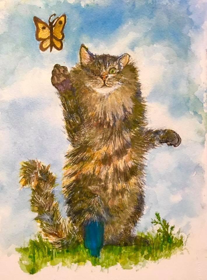 Meet Stubby The Cat Image